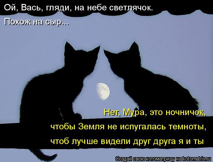 Котоматрица: Ой, Вась, гляди, на небе светлячок.  Похож на сыр... Нет, Мура, это ночничок,  чтобы Земля не испугалась темноты, чтоб лучше видели друг друга я и