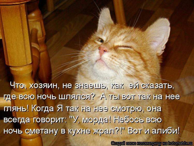 http://kotomatrix.ru/images/lolz/2015/01/10/kotomatritsa_2v.jpg