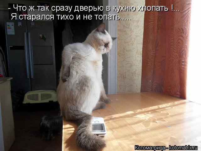Котоматрица: - Что ж так сразу дверью в кухню хлопать !... Я старался тихо и не топать.....