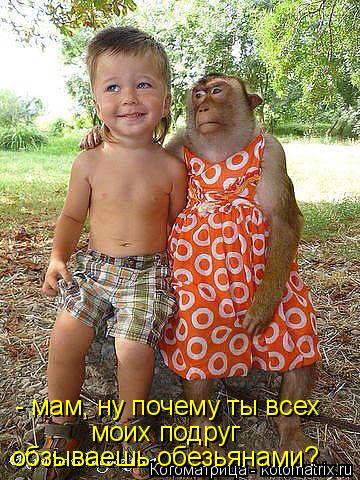 Котоматрица: - мам, ну почему ты всех моих подруг обзываешь обезьянами?