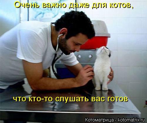 Котоматрица: Очень важно даже для котов,   что кто-то слушать вас готов