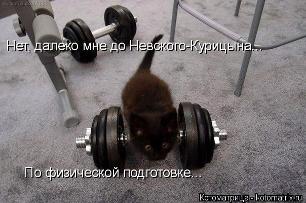 Котоматрица: Нет, далеко мне до Невского-Курицына... По физической подготовке...