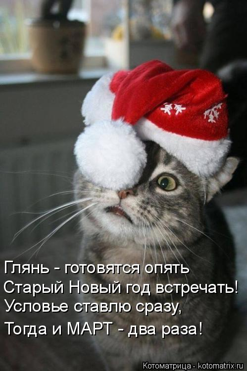 Котоматрица: Глянь - готовятся опять Старый Новый год встречать! Условье ставлю сразу, Тогда и МАРТ - два раза!