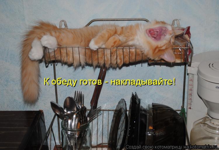 http://kotomatrix.ru/images/lolz/2015/01/12/kotomatritsa_8i.jpg