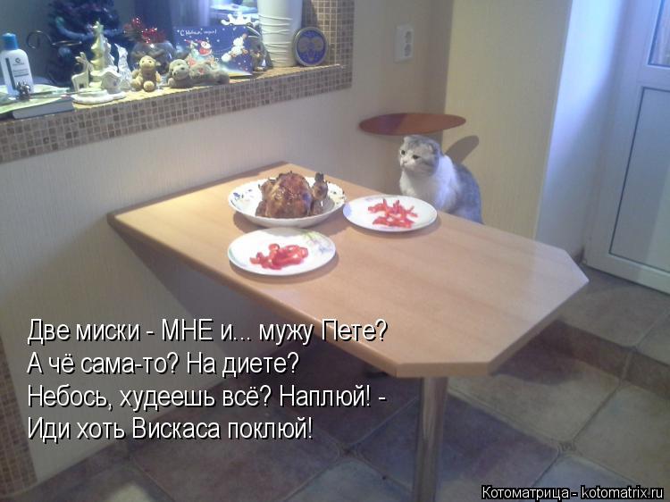 Котоматрица: Две миски - МНЕ и... мужу Пете? А чё сама-то? На диете? Небось, худеешь всё? Наплюй! - Иди хоть Вискаса поклюй!