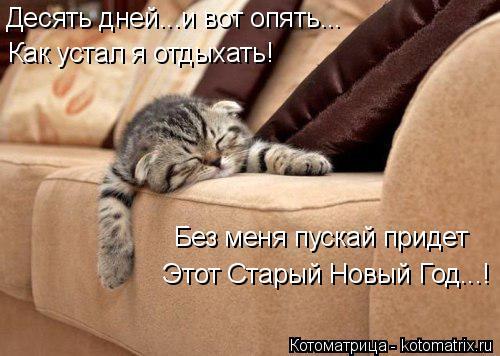Котоматрица: Десять дней...и вот опять... Как устал я отдыхать! Без меня пускай придет Этот Старый Новый Год...!