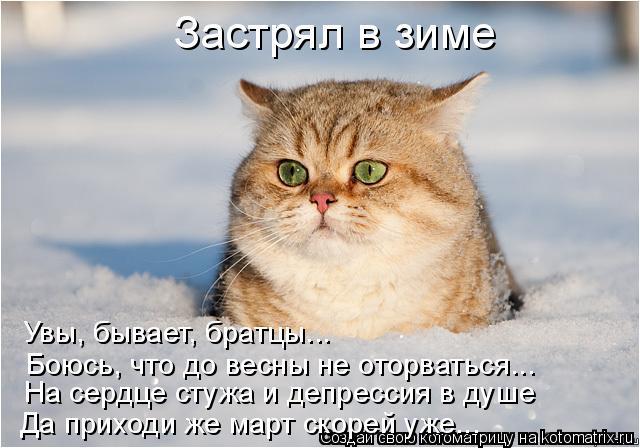 Котоматрица: Застрял в зиме Да приходи же март скорей уже... Увы, бывает, братцы... Боюсь, что до весны не оторваться... На сердце стужа и депрессия в душе