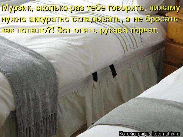 Котоматрица: Мурзик, сколько раз тебе говорить, пижаму нужно аккуратно складывать, а не бросать как попало?! Вот опять рукава торчат.