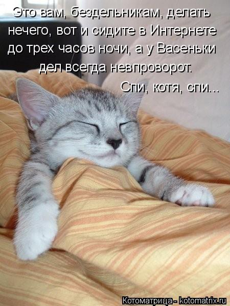 Котоматрица: Это вам, бездельникам, делать нечего, вот и сидите в Интернете до трех часов ночи, а у Васеньки дел всегда невпроворот. Спи, котя, спи...