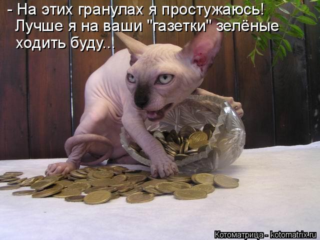 """Котоматрица: - На этих гранулах я простужаюсь! Лучше я на ваши """"газетки"""" зелёные ходить буду..."""