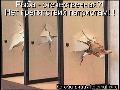 Котоматрица: Рыба - отечественная?! Нет препятствий патриотам!!!
