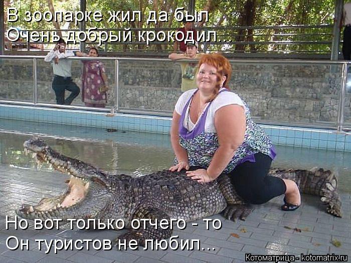 Котоматрица: В зоопарке жил да был Очень добрый крокодил... Но вот только отчего - то Он туристов не любил...