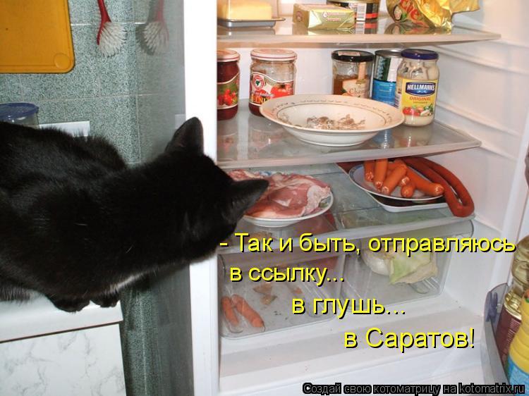 Котоматрица: - Так и быть, отправляюсь в ссылку... в глушь... в Саратов!