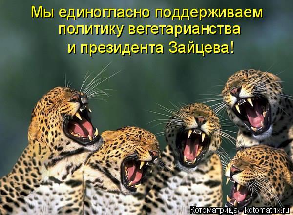 Котоматрица: Мы единогласно поддерживаем  политику вегетарианства и президента Зайцева!