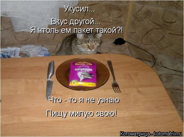 Котоматрица: Укусил... Вкус другой... Я чтоль ем пакет такой?! Что - то я не узнаю  Пищу милую свою!