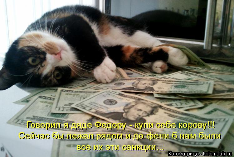 Котоматрица: Говорил я дяде Федору - купи себе корову!!! Сейчас бы лежал рядом и до фени б нам были все их эти санкции...
