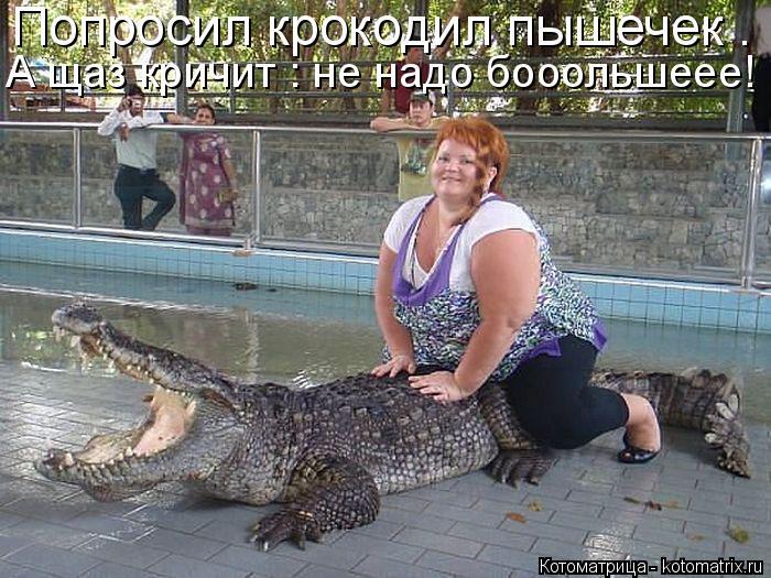 Котоматрица: Попросил крокодил пышечек . А щаз кричит : не надо бооольшеее!