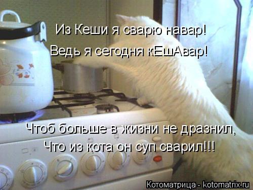 Котоматрица: Из Кеши я сварю навар! Чтоб больше в жизни не дразнил, Что из кота он суп сварил!!! Ведь я сегодня кЕшАвар!