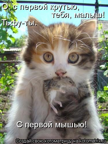 Котоматрица: С первой мышью! О, с первой крутью,  Тьфу-ты. тебя, малыш!