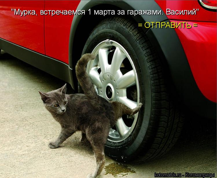 http://kotomatrix.ru/images/lolz/2015/01/27/kotomatritsa_yi.jpg