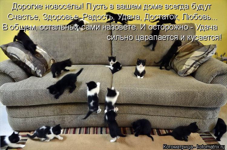 Котоматрица: Дорогие новосёлы! Пусть в вашем доме всегда будут  Счастье, Здоровье, Радость, Удача, Достаток, Любовь... В общем, остальных сами назовёте. И о