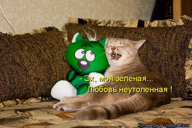 Котоматрица: - Эх, моя зеленая... Любовь неутоленная !