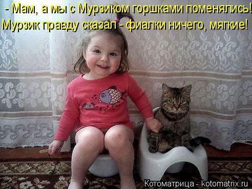 Котоматрица: - Мам, а мы с Мурзиком горшками поменялись! Мурзик правду сказал - фиалки ничего, мягкие!