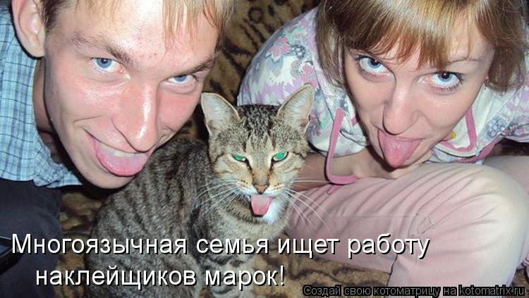 http://kotomatrix.ru/images/lolz/2015/02/02/kotomatritsa_D.jpg