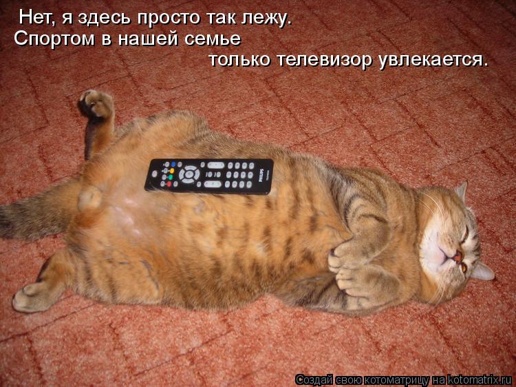 Котоматрица: Нет, я здесь просто так лежу. Спортом в нашей семье  только телевизор увлекается.