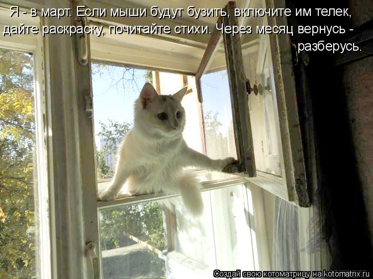 Котоматрица: Я - в март. Если мыши будут бузить, включите им телек, дайте раскраску, почитайте стихи. Через месяц вернусь - разберусь.
