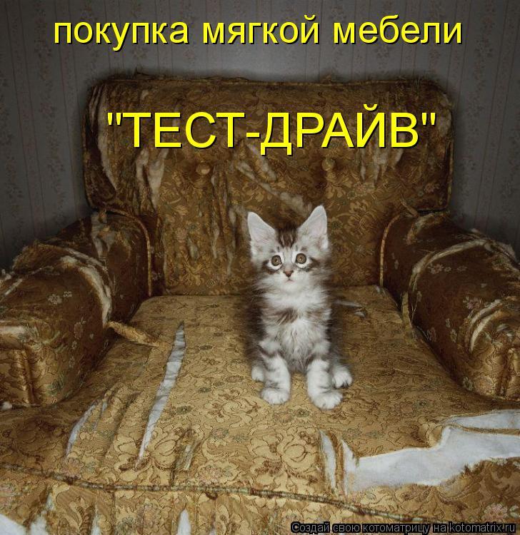 """Котоматрица: покупка мягкой мебели """"ТЕСТ-ДРАЙВ"""""""