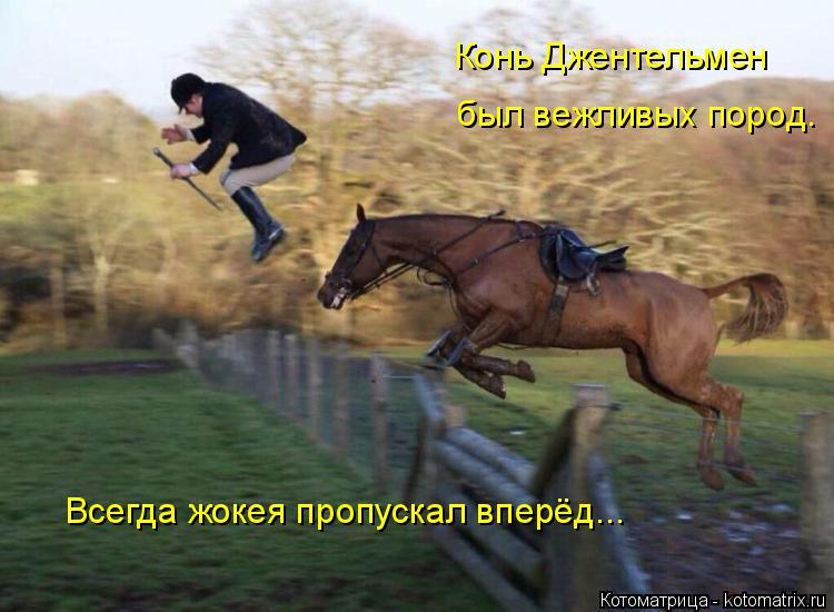 Котоматрица: Конь Джентельмен был вежливых пород. Всегда жокея пропускал вперёд...