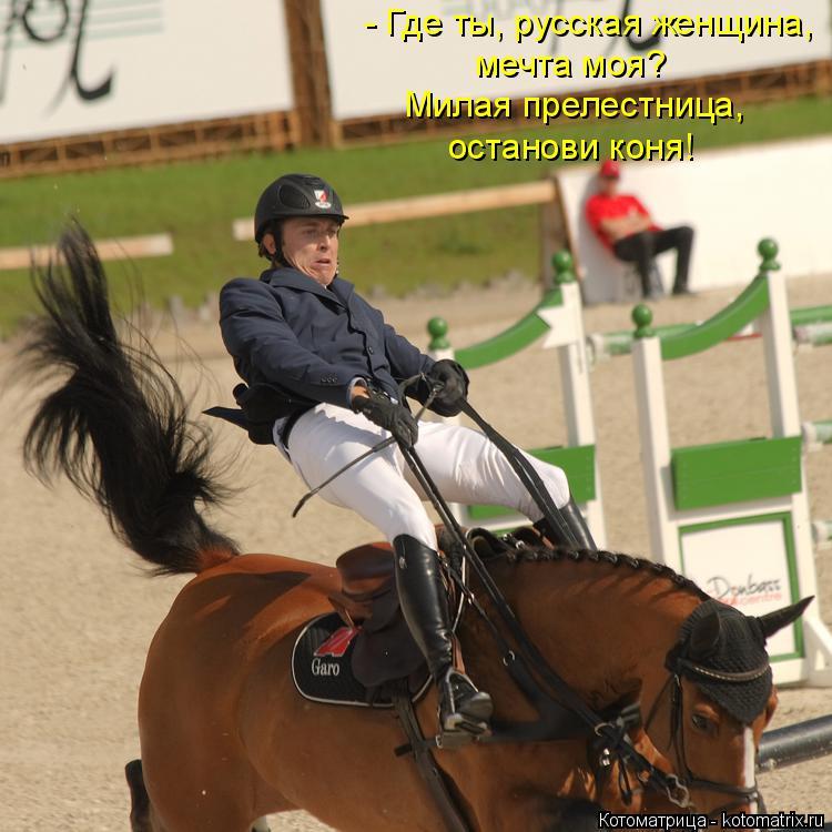 Котоматрица: - Где ты, русская женщина, мечта моя? Милая прелестница, останови коня!