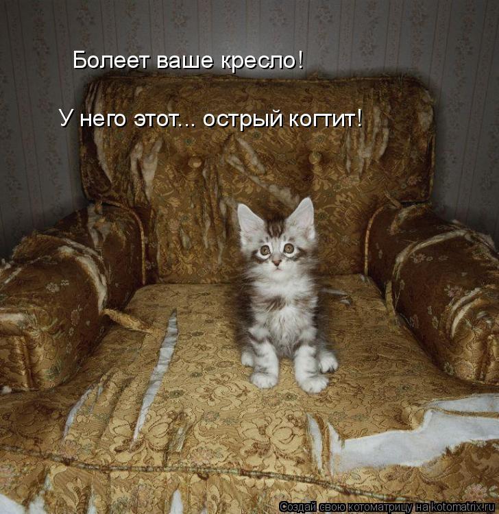 Котоматрица: Болеет ваше кресло! У него этот... острый когтит!