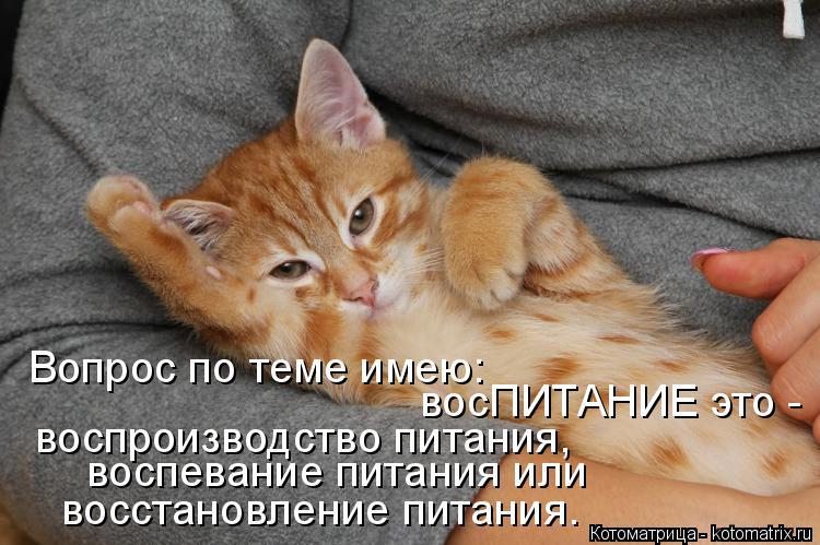 http://kotomatrix.ru/images/lolz/2015/02/04/kotomatritsa_9z.jpg