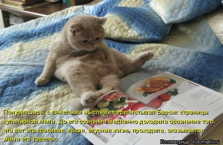 Котоматрица: мимо его тарелок... Понурившись, с тяжелыми мыслями перелистывал Барсик страницы кулинарной книги. До его сознания медленно доходило осозн