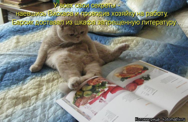 Котоматрица: Барсик доставал из шкафа запрещенную литературу... наевшись Вискаса и проводив хозяйку на работу, У всех свои секреты -
