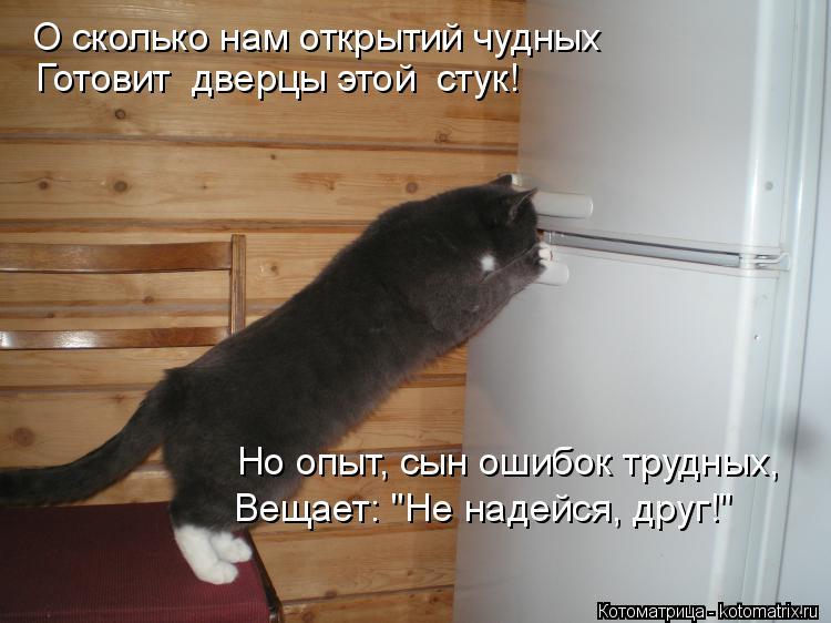 """Котоматрица: О сколько нам открытий чудных Готовит  дверцы этой  стук! Но опыт, сын ошибок трудных, Вещает: """"Не надейся, друг!"""""""