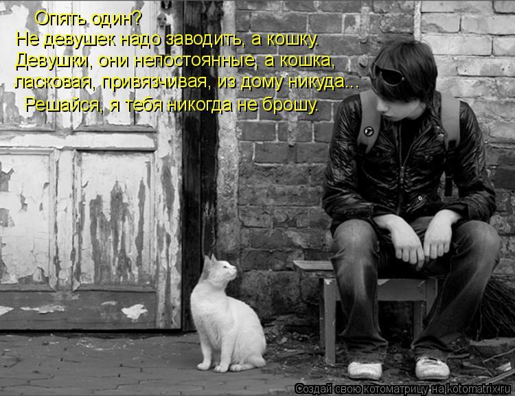 Котоматрица: ласковая, привязчивая, из дому никуда... Девушки, они непостоянные, а кошка, Опять один? Решайся, я тебя никогда не брошу. Не девушек надо заво