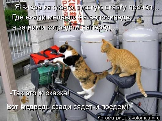 Котоматрица: Я вчера какую-то русскую сказку прочёл... Где ехали медведи на велосипеде, а за ними кот,задом наперёд... -Так это ж сказка! Вот медведь сзади с