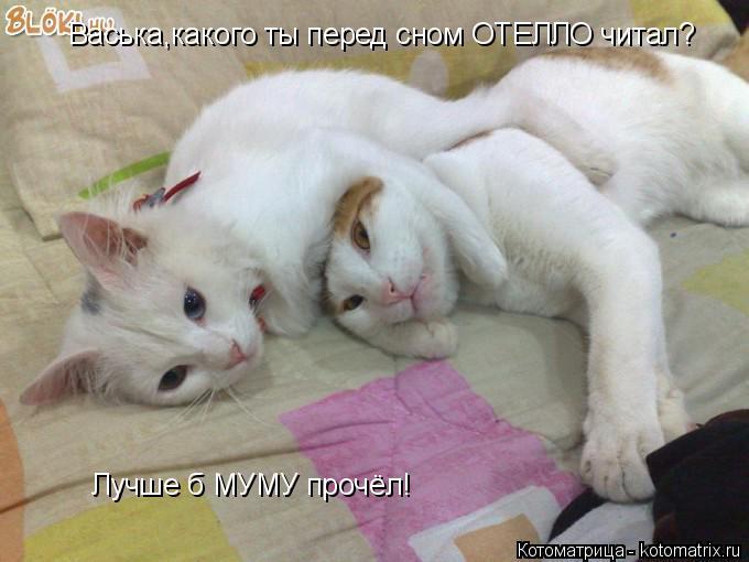 Котоматрица: Васька,какого ты перед сном ОТЕЛЛО читал? Лучше б МУМУ прочёл!
