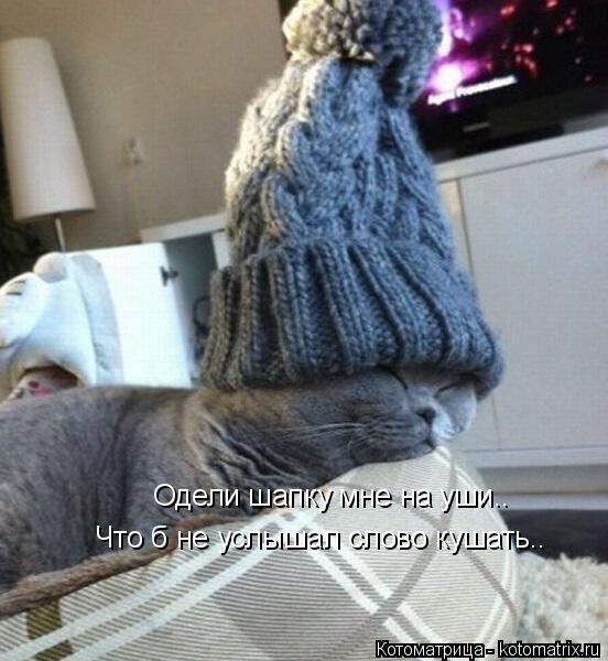Котоматрица: Одели шапку мне на уши.. Что б не услышал слово кушать..