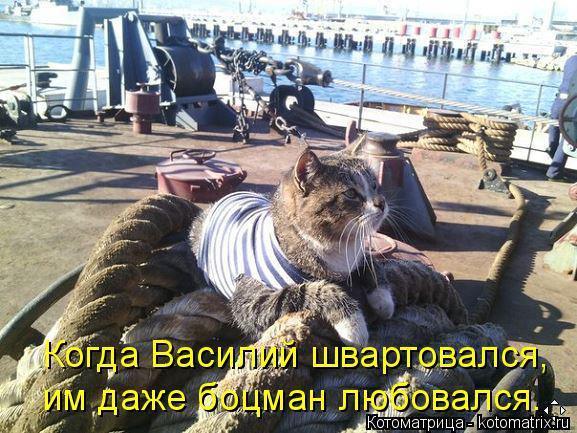 Котоматрица: Когда Василий швартовался, им даже боцман любовался.