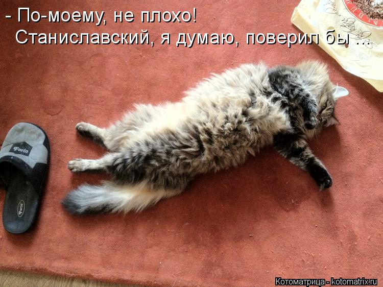 Котоматрица: - По-моему, не плохо! Станиславский, я думаю, поверил бы ...