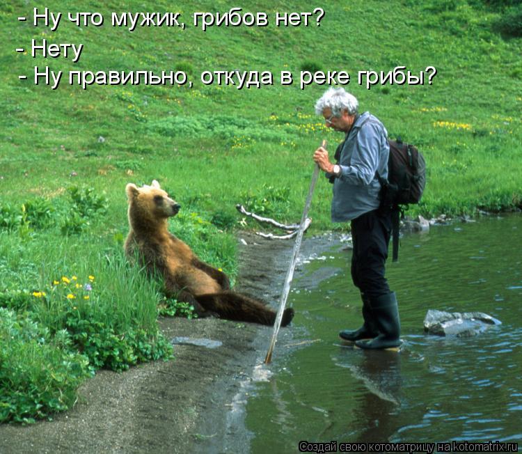 Котоматрица: - Ну что мужик, грибов нет? - Нету - Ну правильно, откуда в реке грибы?