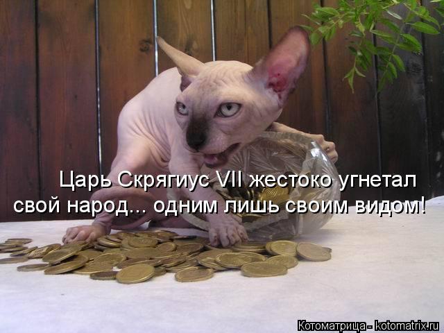 http://kotomatrix.ru/images/lolz/2015/02/08/kotomatritsa_EG.jpg