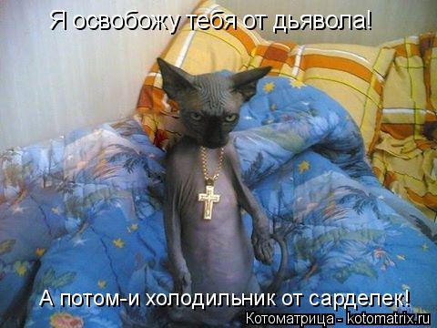 Котоматрица: Я освобожу тебя от дьявола! А потом-и холодильник от сарделек!