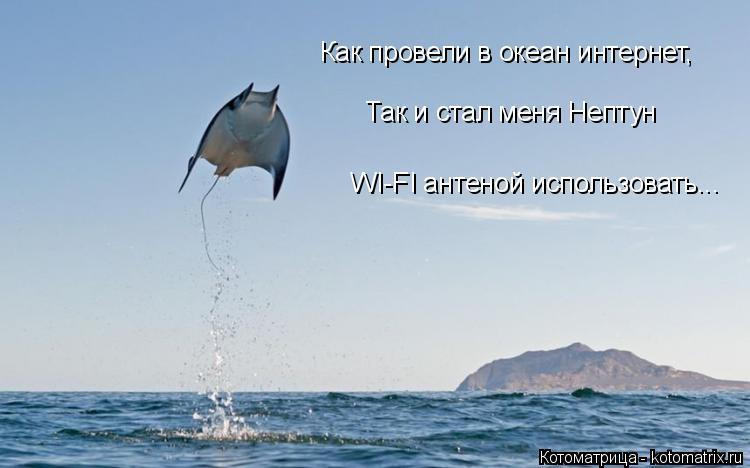 Котоматрица: Как провели в океан интернет, Так и стал меня Нептун WI-FI антеной использовать...