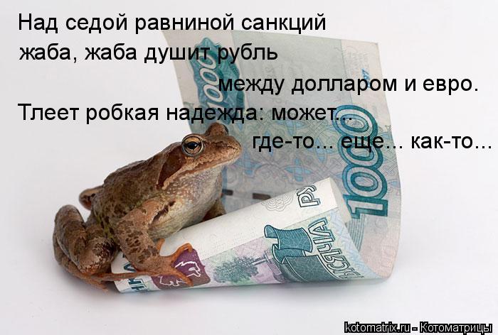 Котоматрица: Над седой равниной санкций  жаба, жаба душит рубль Тлеет робкая надежда: может...  где-то... еще... как-то... между долларом и евро.