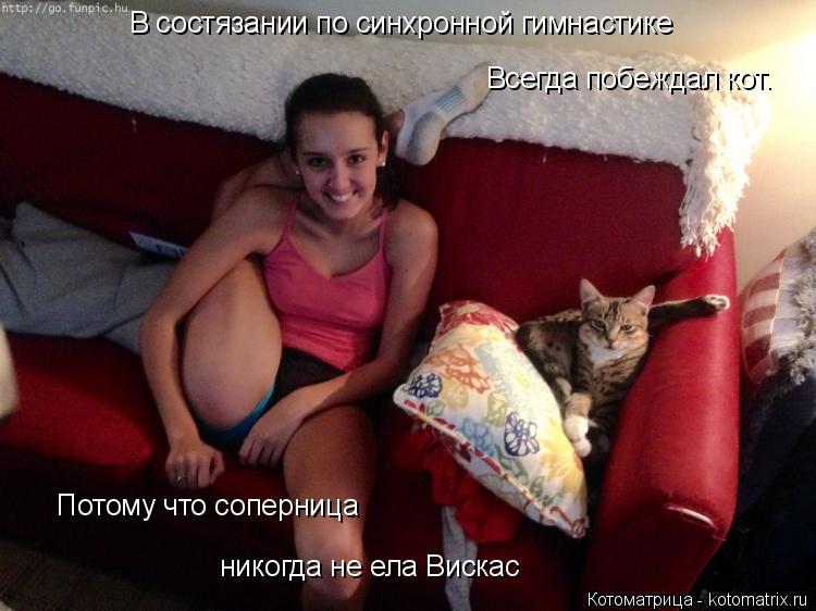 Котоматрица: В состязании по синхронной гимнастике Всегда побеждал кот. Потому что соперница никогда не ела Вискас